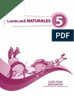 Guia Naturales Quinto Año