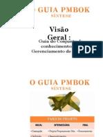 Visão Geral - Guia Do Conjunto de Conhecimentos Em Gerenciamento de Projetos
