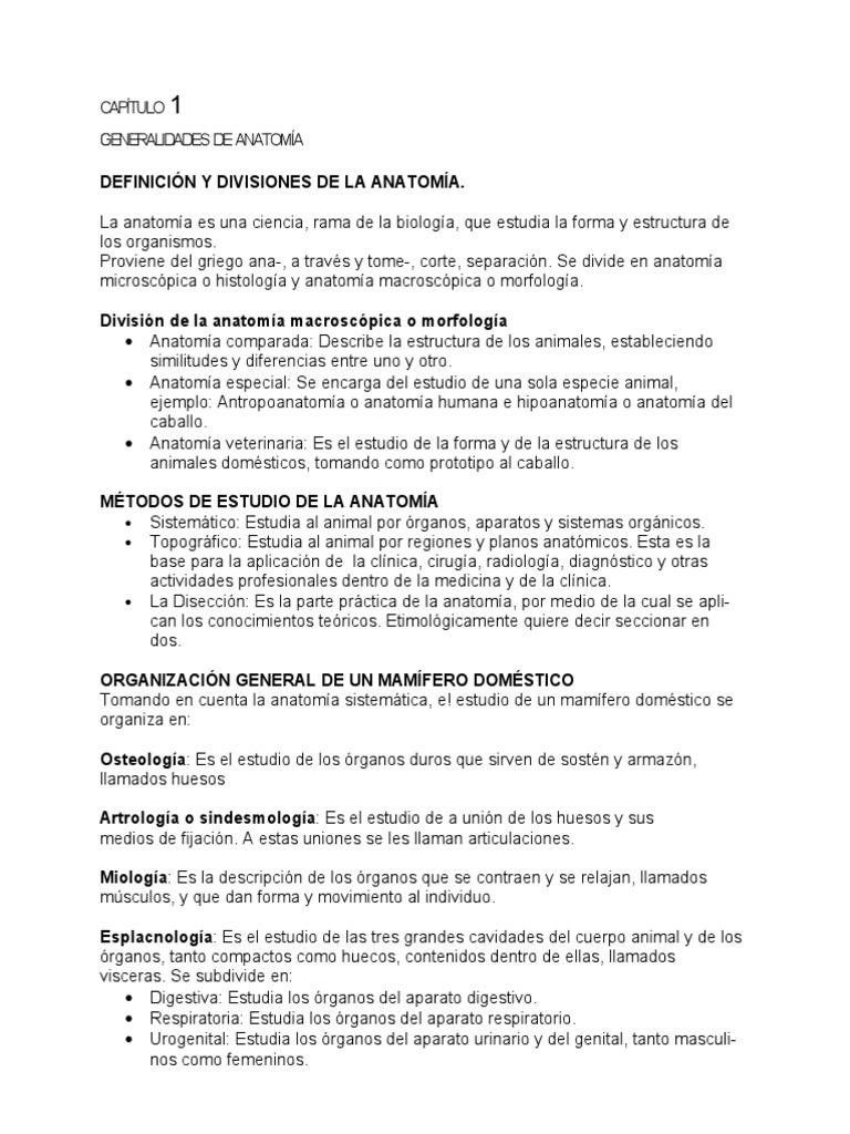 Lujoso Anatomía Biología Definición Embellecimiento - Anatomía de ...
