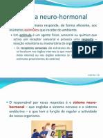Sistema Neuro Hormonal