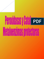 peroxidasas-catalasas