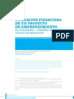 Evaluacion Financiera Proyecto Emprendimiento