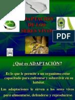 adaptacionesseresvivos-110504221545-phpapp02