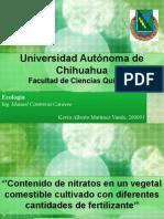 tesis sobre concentracion de nitritos, nitruros y nitratos en alimentos de origen vegetal