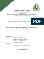 PRODELAC RASIM last print.pdf