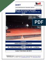 Informe de aplicación de pintura