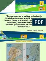 Presentacion Tesis Hernan Garces 27febrero2010