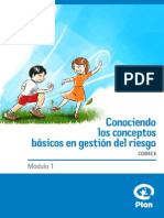 Manual Desastres Web 2 (1)