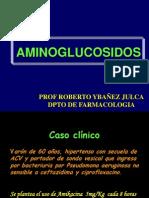 Aminoglucosidos y Quinolonas