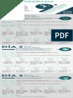 Programa Actualizado PDF