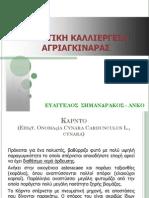 agriaginara_sb.pdf