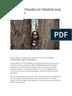 A Cura Através Da Terapia Das Árvores!
