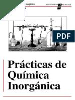 Química Inorgánica Practicas