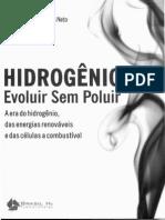 Hidrogênio Evoluir Sem Poluir