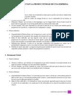 Factores Que Afectan La Productividad de Una Empresa