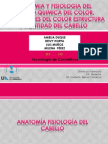 EXPOSICIÓN ESTRUC, Y CANTIDAD DE CABELLO.pdf