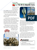 adaptations5-6 quick read cactus - high