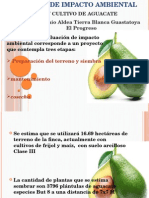 Presentacio EIA Aguacate
