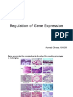 BIO202 08 Gene Regulation Networks