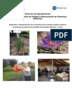 6_azafran_mendoza (1).pdf