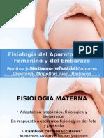 FISIOLOGÍA DEL EMBARAZO