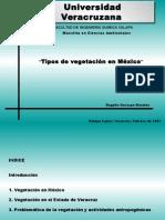 Tipos de Vegetación en México