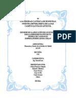 Informe Aplicacion de Los 25 Pasos de calidad Version 6 Usb 1