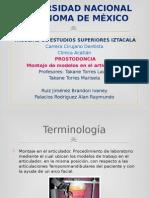 Montaje Articulado Prostodoncia.