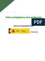 Guia pedagogica profesores