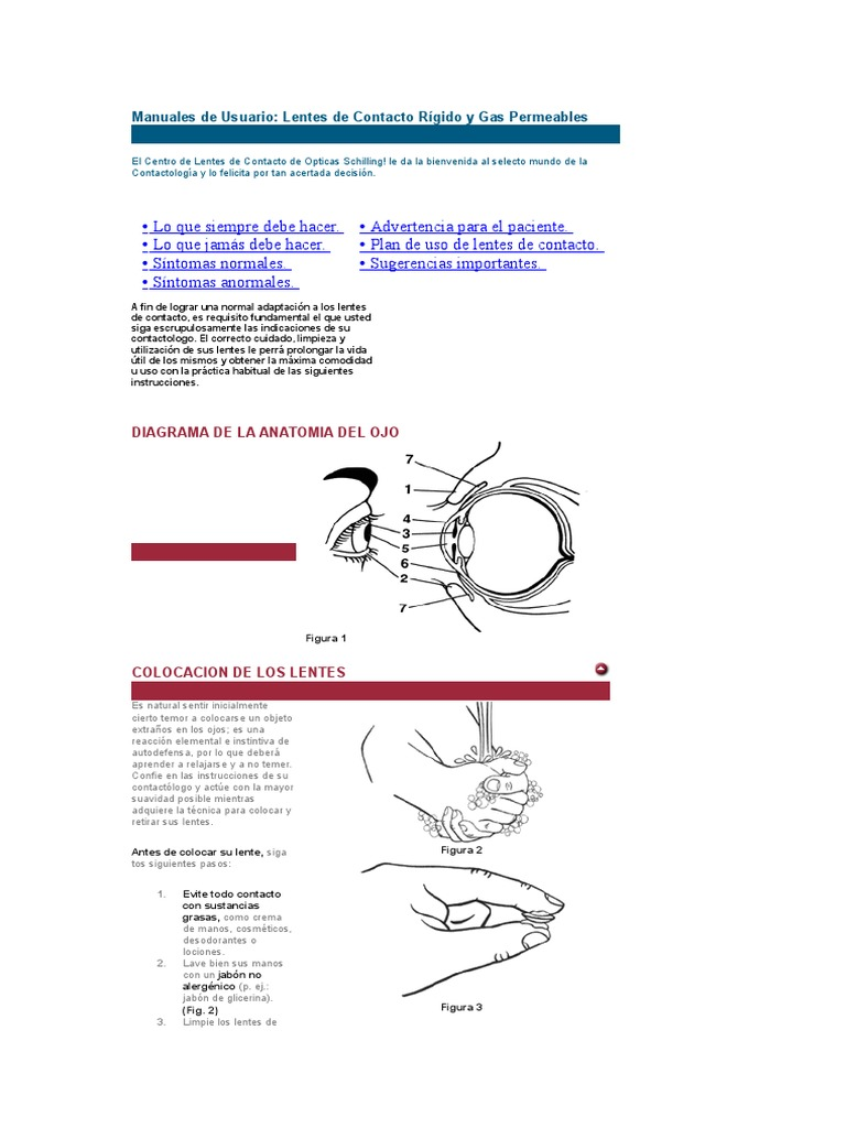 Perfecto Diagrama De La Anatomía Del Párpado Colección de Imágenes ...