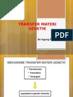 Transfer Gene New