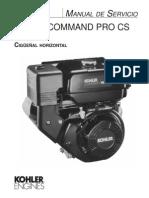Kohler Command Pro10