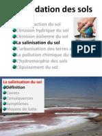 (D) Salinisation Des Sols