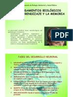 Fundamentos Biologicos Del Aprendizaje y La Memoria