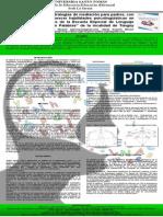 Póster Diseño de Estrategias de Mediación Sección 8 2014