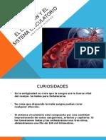 El-Corazón-y-El-sistema-circulatorio.pptx