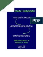 A questão florestal e o Desenvolvimento.pdf