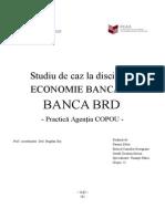 Proiect Economie Bancara BRD