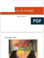 traumadeesofago-120917221412-phpapp02.pptx