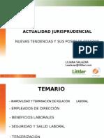Presentacion Lsm Febrero 2015 II