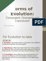 convergent evolution presentation