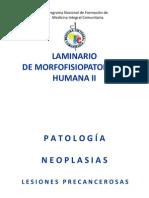 Laminario Mfph II