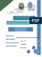 informe n°01-final.docx