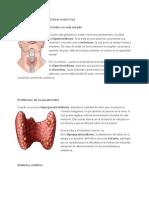 Enfermedades de Las Glándulas Endocrinas