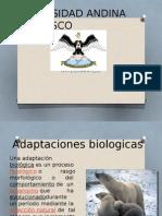 ADAPTACIONES BIOLOGICAS