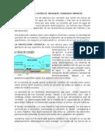 PROTECCIÓN CATÓDICA  MEDIANTE CORRIENTE IMPRESA.docx