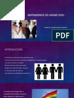 Matrimonios Del Mismo Sexo