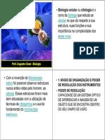 Citologia e Divis_o Celular
