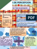 diapositiva percepcion