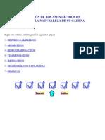 Clasificación de Los Aminoácidos en Función de La Naturaleza de Su Cadena Lateral